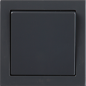 Anthracite_switch_1.jpg